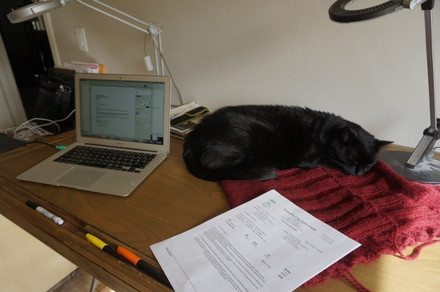 A cluttered work surface with an open laptop, coloured markers, some papers leaning against a wine-coloured knitted object, upon which curls a resting black cat.